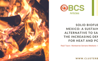 Paper of the Month: Solid biofuels in Mexico: a sustainable alternative to satisfy the increasing demand for heat and power