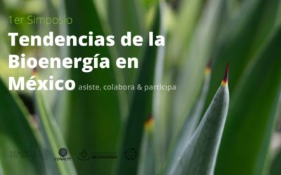 Trends of Bioenergy in Mexico