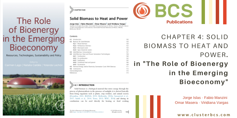 Colaboración del Cluster BCS en libro: THE ROLE OF BIOENERGY IN THE EMERGING BIOECONOMY