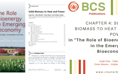 Book Colaboration: THE ROLE OF BIOENERGY IN THE EMERGING BIOECONOMY