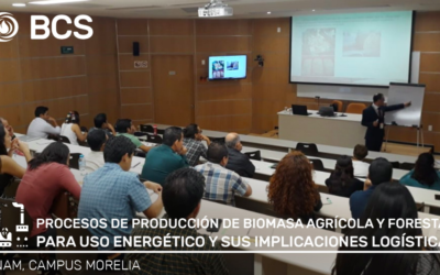 Processes of Production of Agricultural and Forestry Biomass for Energy Use: Course.