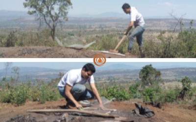 Field visit to analyze the sustainability and environmental impact of charcoal production.