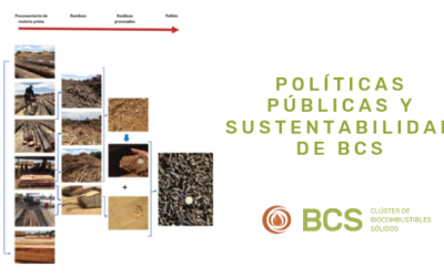 Cluster BCS: field visit for the analysis of sustainability and environmental impact of pellet production.