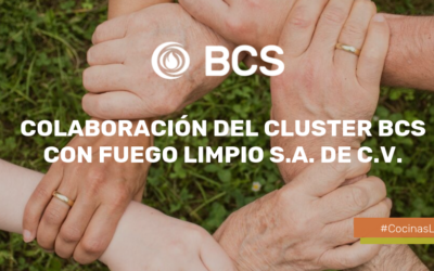 Meet the SBF Cluster collaboration with Fuego Limpio