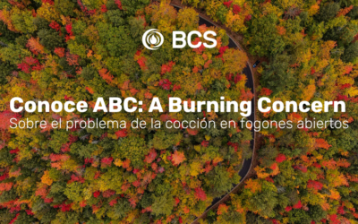 ABC: A Burning Concern