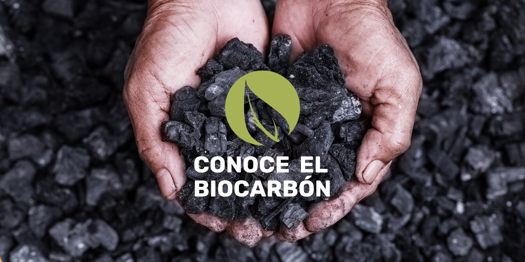 Bio-coal: A renewable and massively producible fuel from lignocellulosic biomass