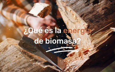 What is Biomass Energy?