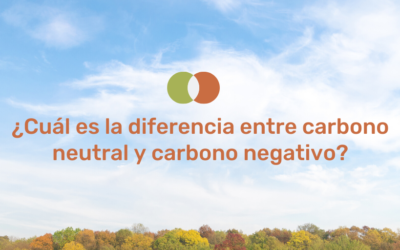 What is the difference between carbon neutral and carbon negative?