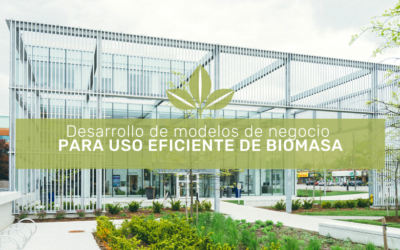 Developing business models for efficient use of biomass – Summary and conclusions