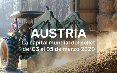 Austria becomes the world capital  pellets