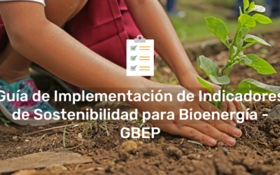 Implementation Guide for the GBEP Sustainability Indicators for Bioenergy