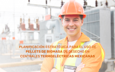 Strategic planning for the use of pellets biomass waste in Mexican thermoelectric plants