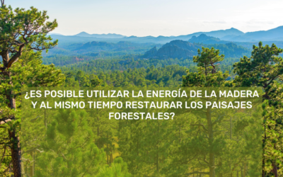 Wood energy and forest landscape restoration: exploring positive linkages