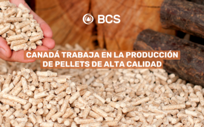 Canada works in the production of high quality pellets